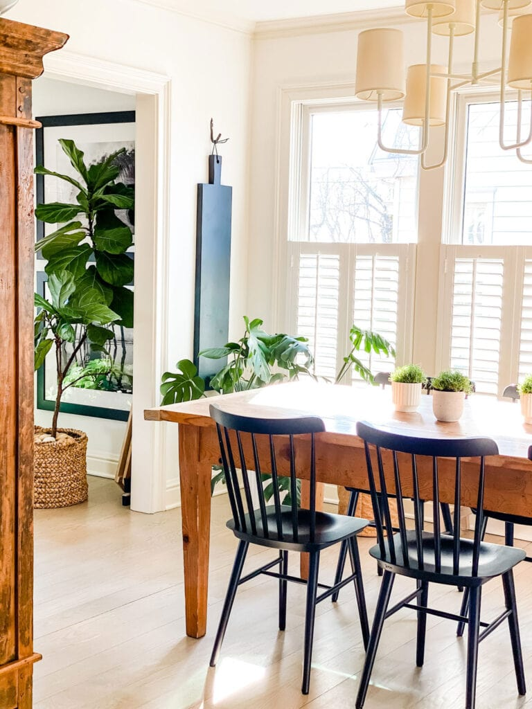 dining room with black chairs and plants
