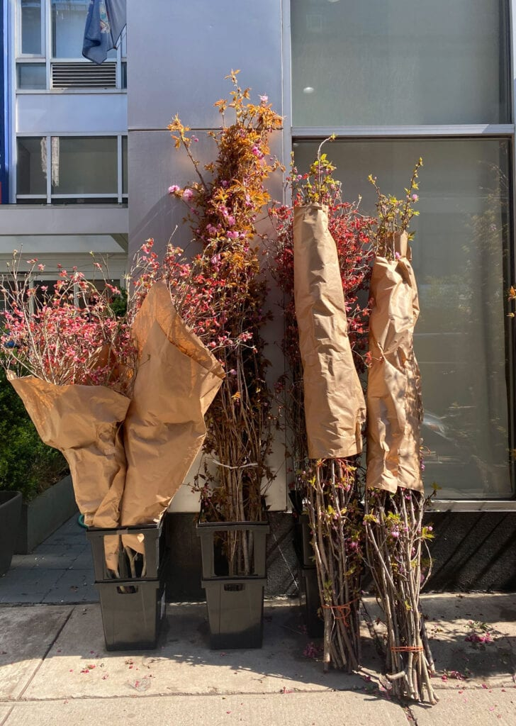 Large bundles of blocking branches wrapped in Kraft paper