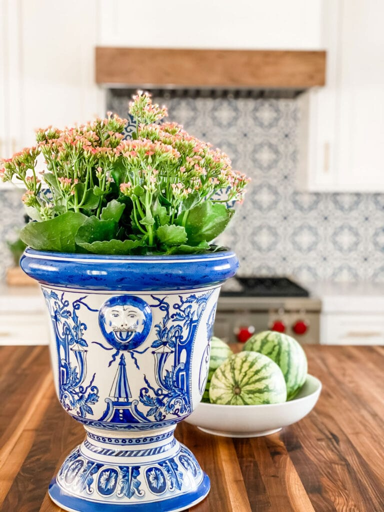 pottery urn with plant and bowl of watermellons