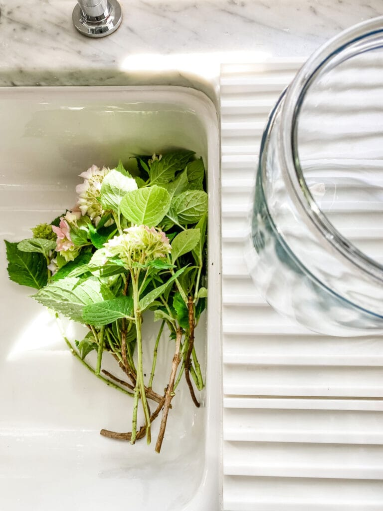 flowers in a farm sink with a large glass jar on counter