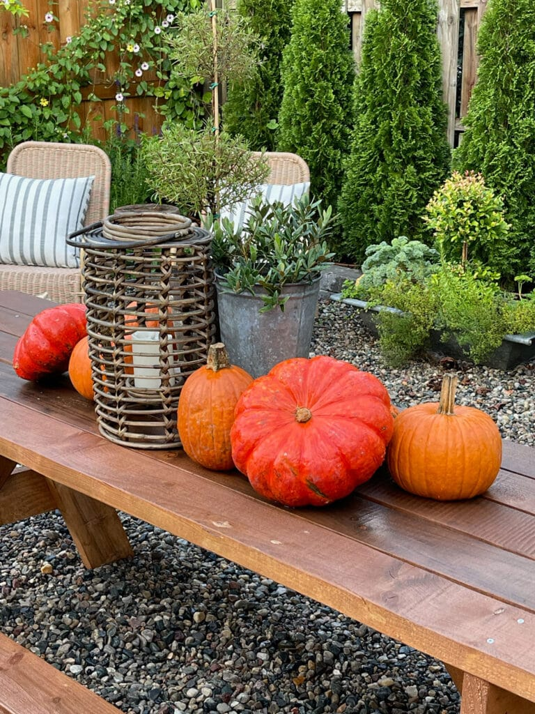 Pea Gravel Patio with Picnic Table in the Fall